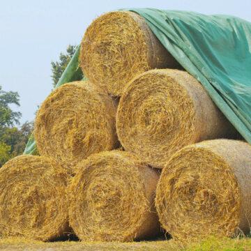 Textile si folii agricultura